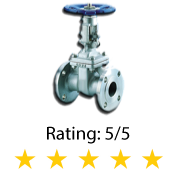 Flanged Gate Valve 300